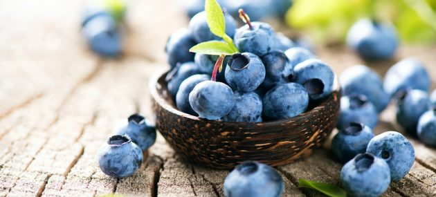 Recent Studies Related to the Benefits of Blueberries