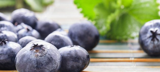 The Multi-fold Benefits of Blueberries
