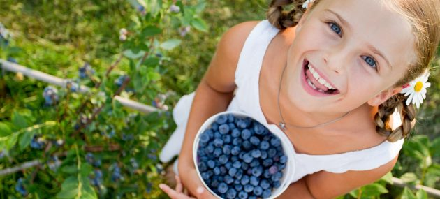 Wild Blueberry: A Memory Booster In Primary School-Age Children.
