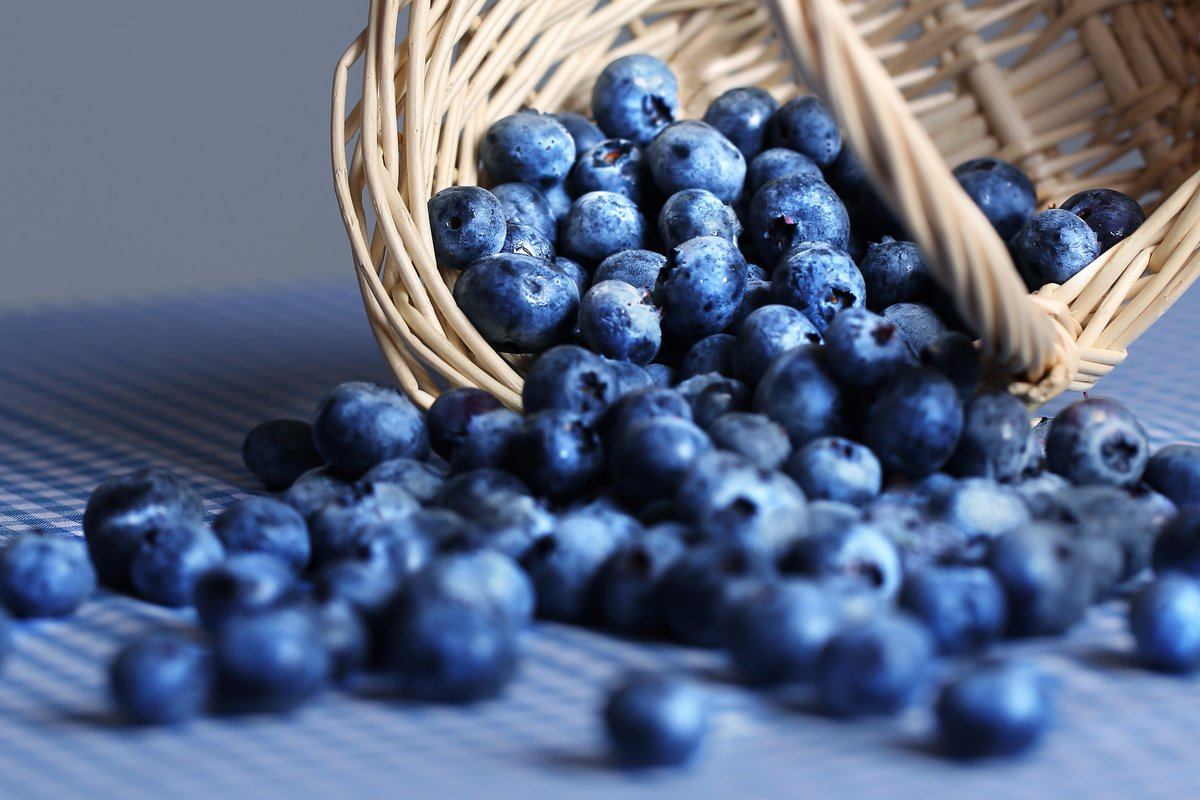 India Opens Doors to Chilean Avocados, Blueberries