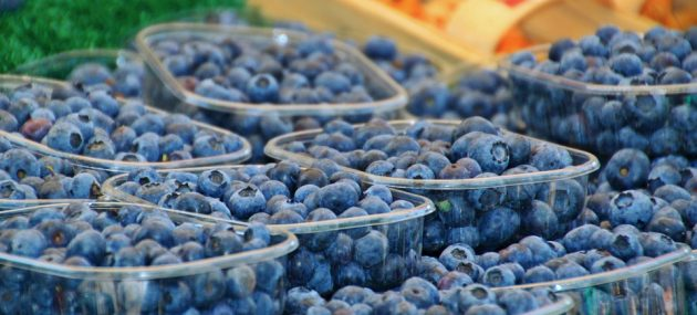U.S. Fresh Blueberry Demand Continues to Rise
