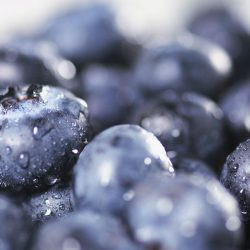 How to Keep Blueberries Fresh?