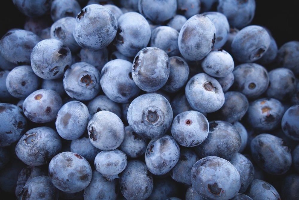 Storing Fresh Blueberries