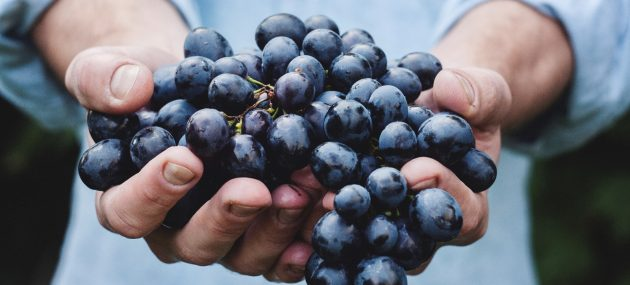 How To Increase Your Fertility With Blueberries