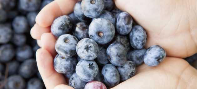 5 Blueberry Hand Care Products