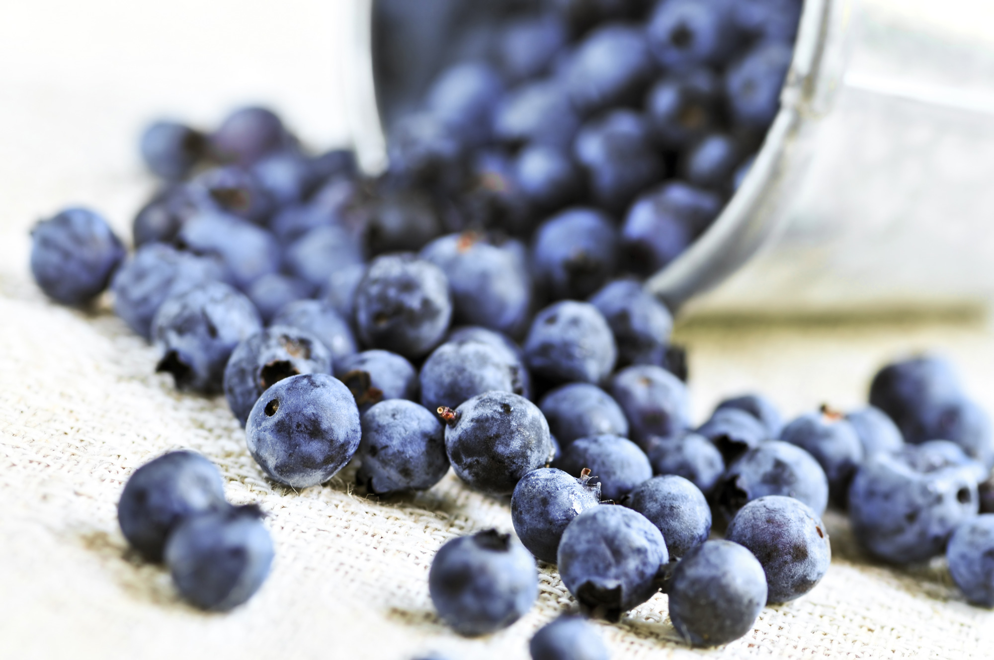 Blueberries are Coated in a White Powder