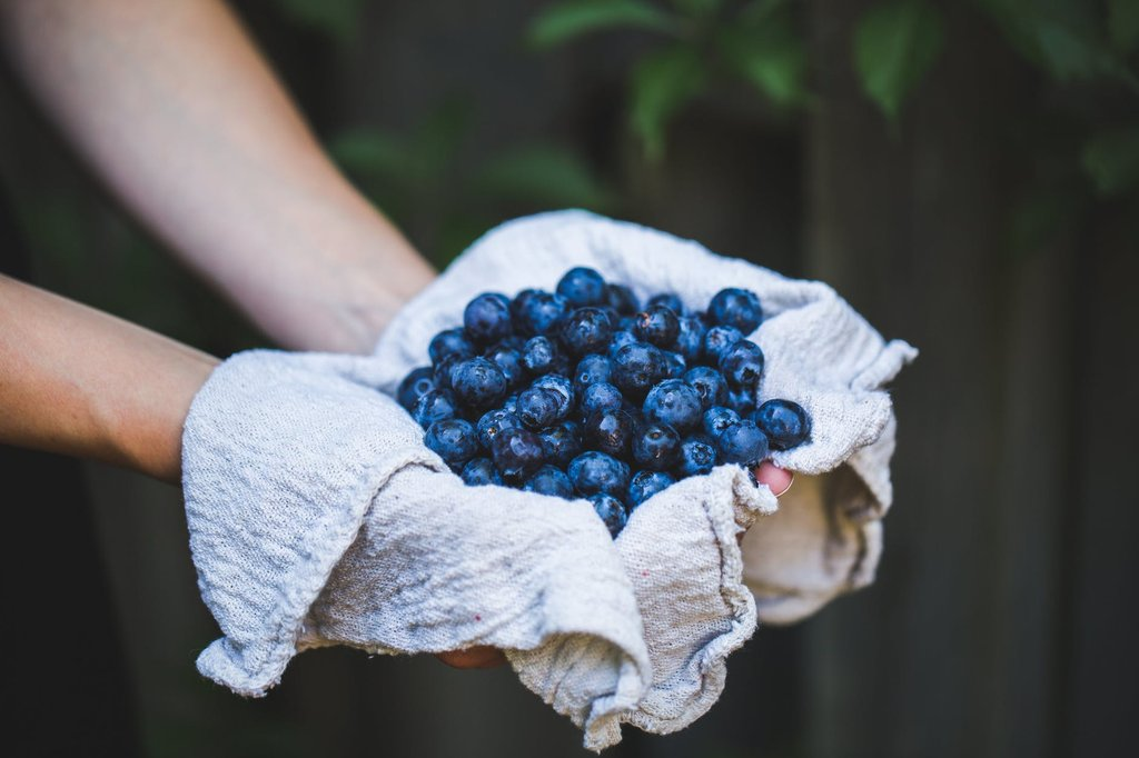 Allergy to Blueberry