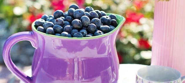 Blueberry Battle Against Diabetes